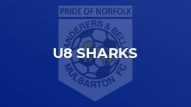U8 Sharks