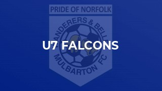 U7 Falcons