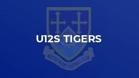 u12s Tigers