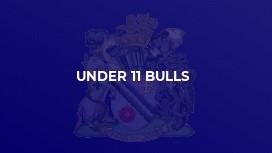 Under 11 Bulls