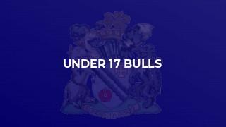 Under 17 Bulls