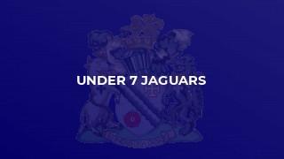 Under 7 Jaguars