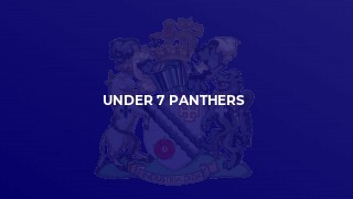 Under 7 Panthers