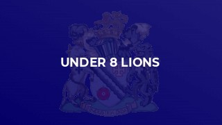 Under 8 Lions
