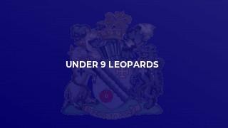 Under 9 Leopards