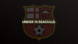 Under 15 Seagulls