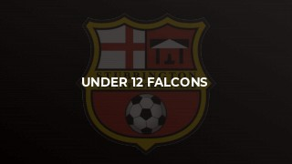 Under 12 Falcons