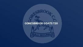 Goresbrook Goats T20