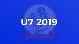 U7 2019