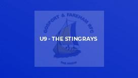 U9 - The Stingrays
