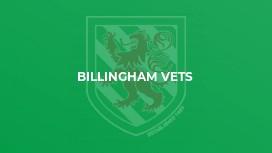 Billingham Vets