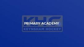 Primary Academy