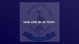 MINI U13S BLUE TEAM