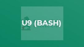 U9 (Bash)
