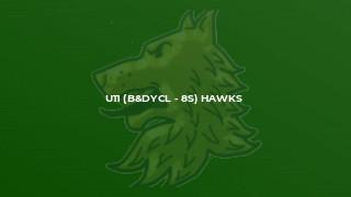 U11 (B&DYCL - 8s) Hawks
