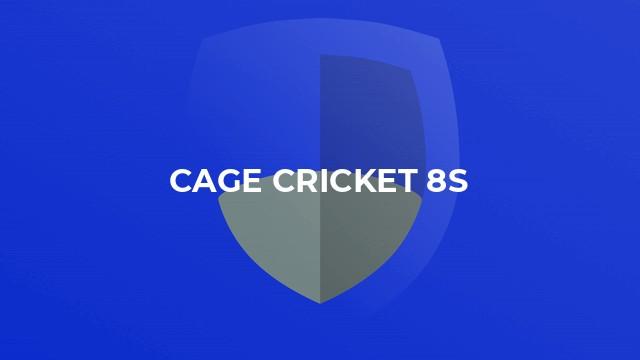 Cage Cricket 8s