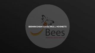 Birmingham & Solihull Hornets