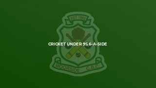 Cricket Under 9s 6-a-Side