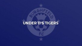 Under 11's Tigers