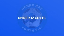 Under 12 Colts