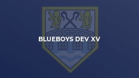 BLUEBOYS DEV XV