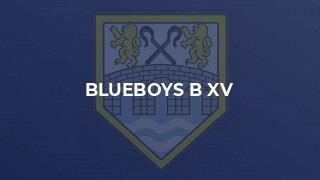 BLUEBOYS B XV