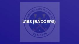 U16s (Badgers)