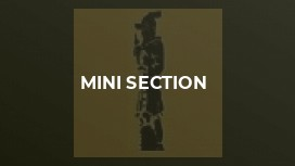 Mini Section