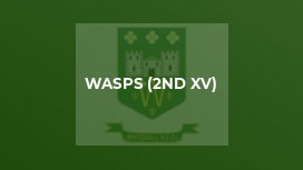 Wasps (2nd XV)