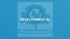 Development XI