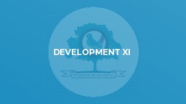 Development XI