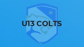 U13 Colts