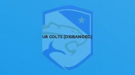 U8 Colts (disbanded)