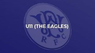 U11 (The Eagles)