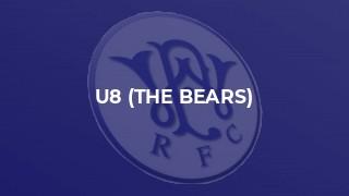U8 (The Bears)