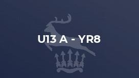 U13 A - Yr8
