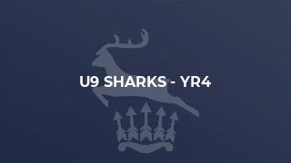 U9 Sharks - Yr4