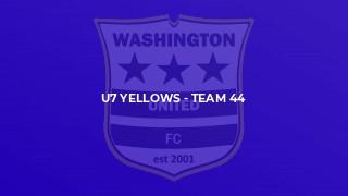 U7 Yellows - Team 44