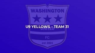 U9 Yellows - Team 31
