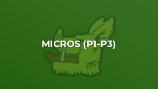 Micros (P1-P3)
