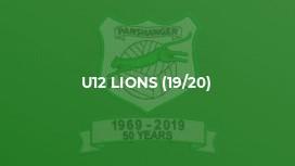 U12 Lions (19/20)
