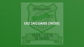 U12 Jaguars (19/20)