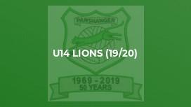 U14 Lions (19/20)