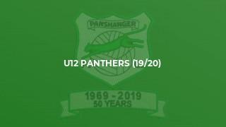 U12 Panthers (19/20)