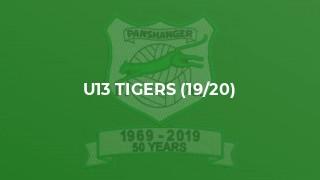 U13 Tigers (19/20)