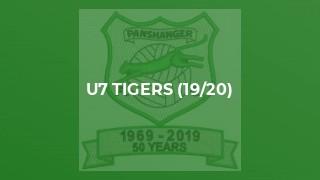 U7 Tigers (19/20)
