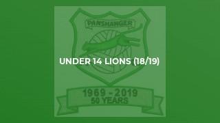 Under 14 Lions (18/19)