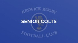 Senior Colts
