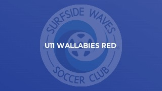 U11 Wallabies Red