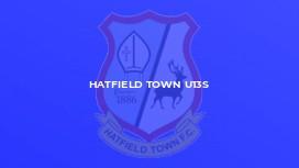 Hatfield Town U13s